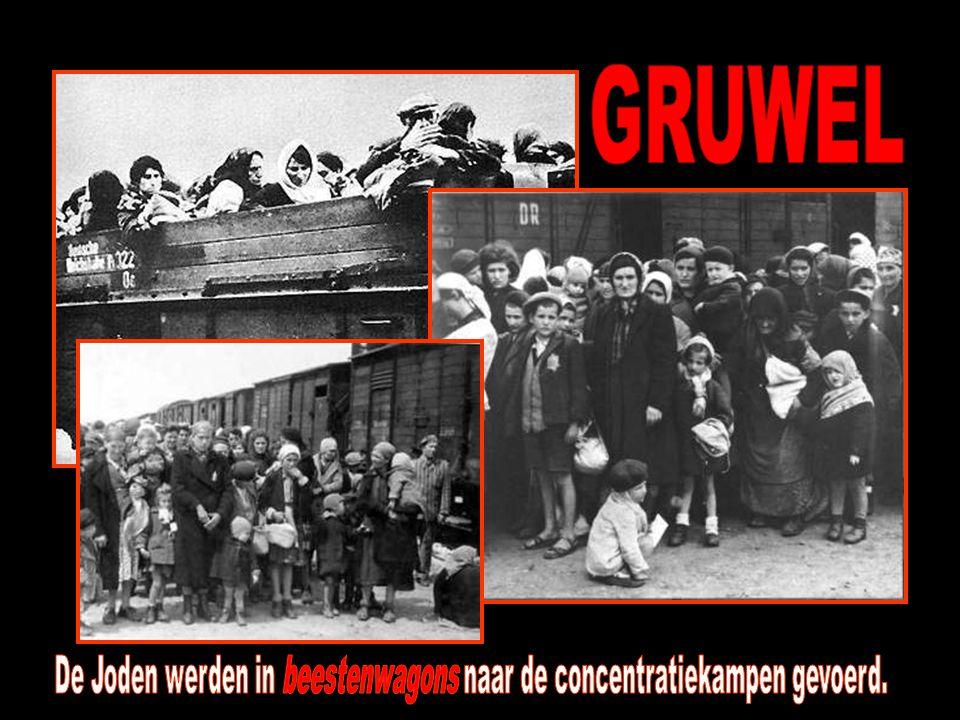 De Joden werden in beestenwagons naar de concentratiekampen gevoerd.