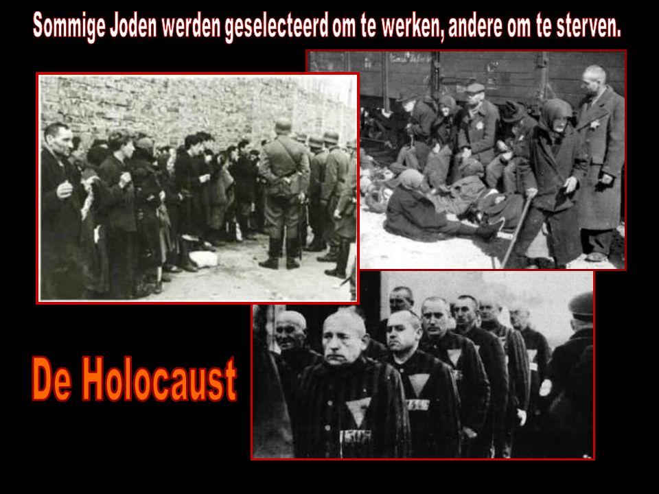 Sommige Joden werden geselecteerd om te werken, andere om te sterven.