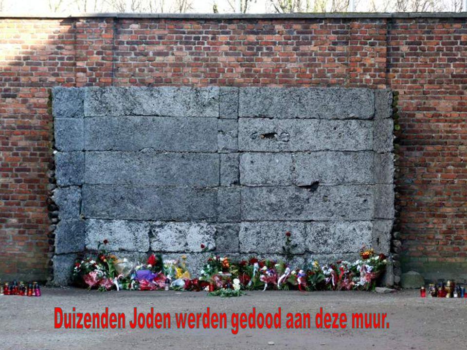 Duizenden Joden werden gedood aan deze muur.