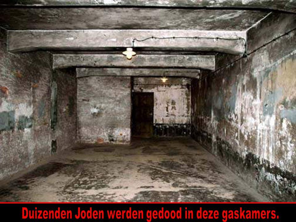 Duizenden Joden werden gedood in deze gaskamers.