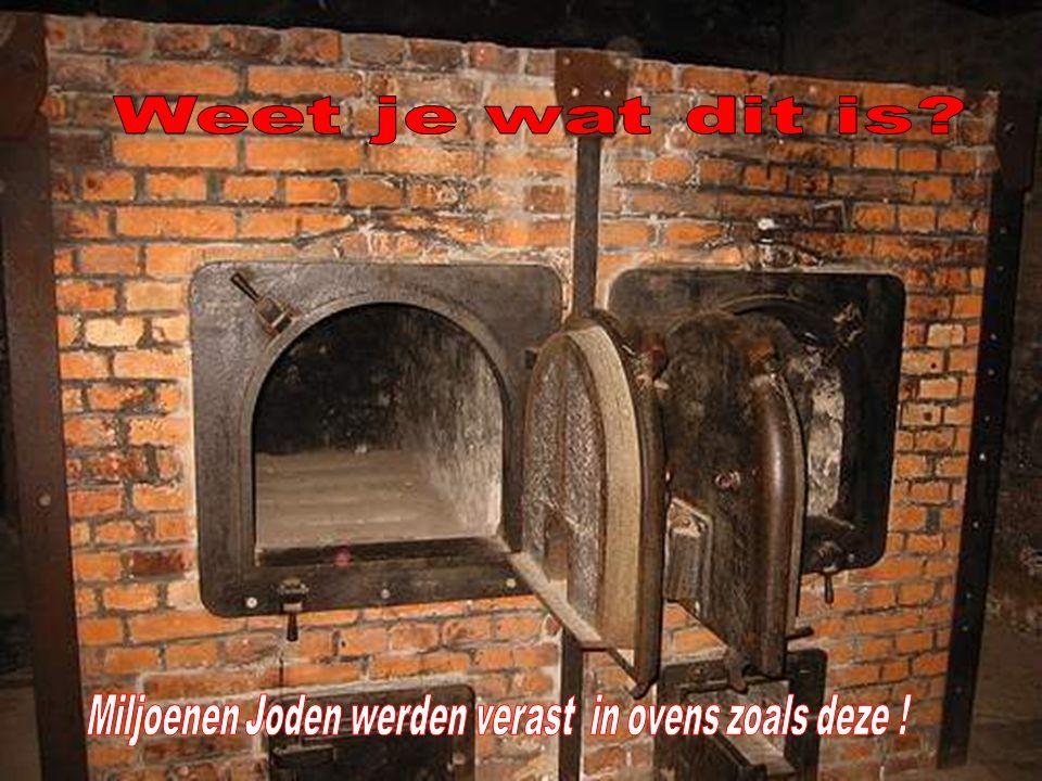 Miljoenen Joden werden verast in ovens zoals deze !