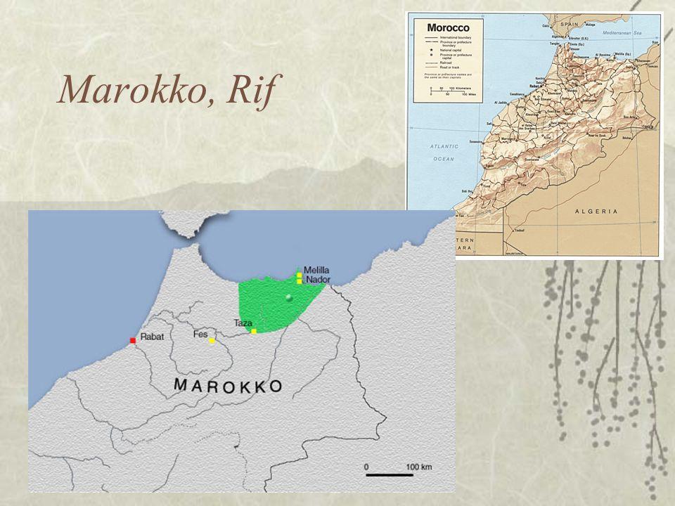 Marokko, Rif