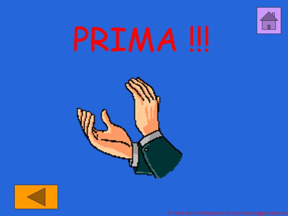 PRIMA !!!