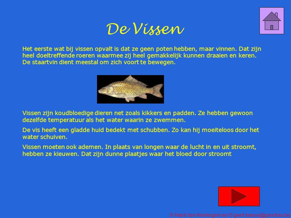 De Vissen