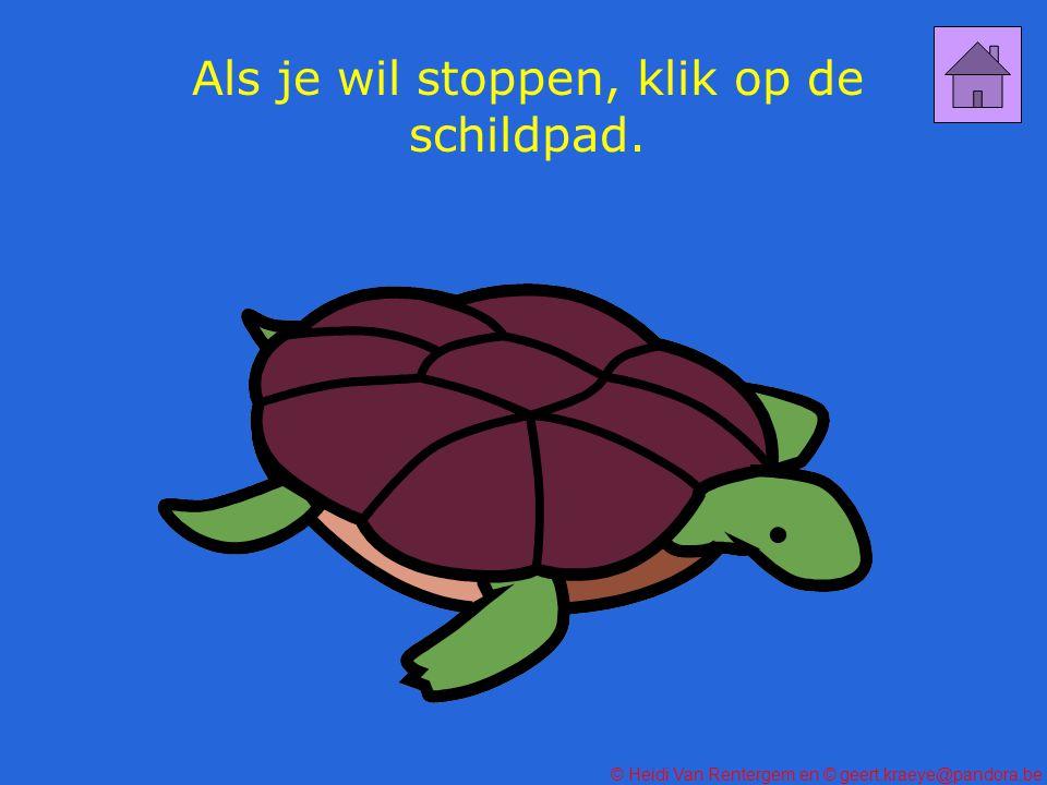 Als je wil stoppen, klik op de schildpad.