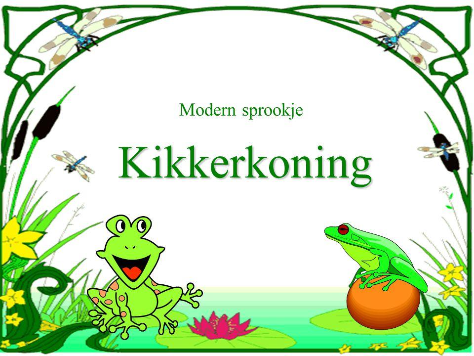 Modern sprookje Kikkerkoning