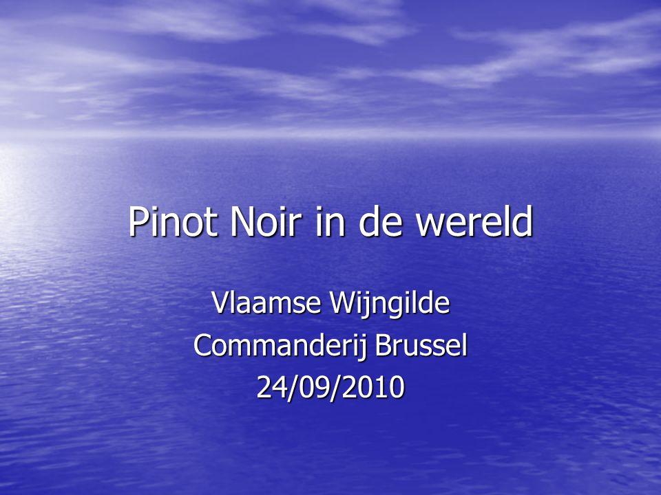 Vlaamse Wijngilde Commanderij Brussel 24/09/2010