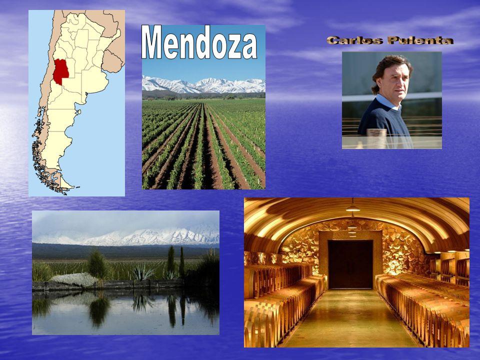 Mendoza Carlos Pulenta