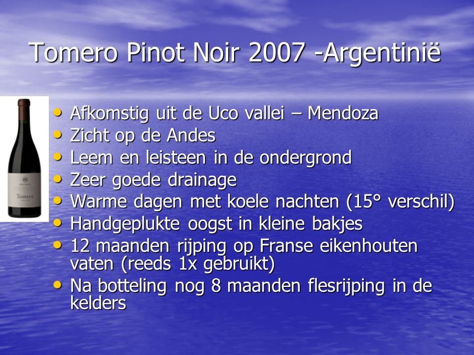 Tomero Pinot Noir 2007 -Argentinië