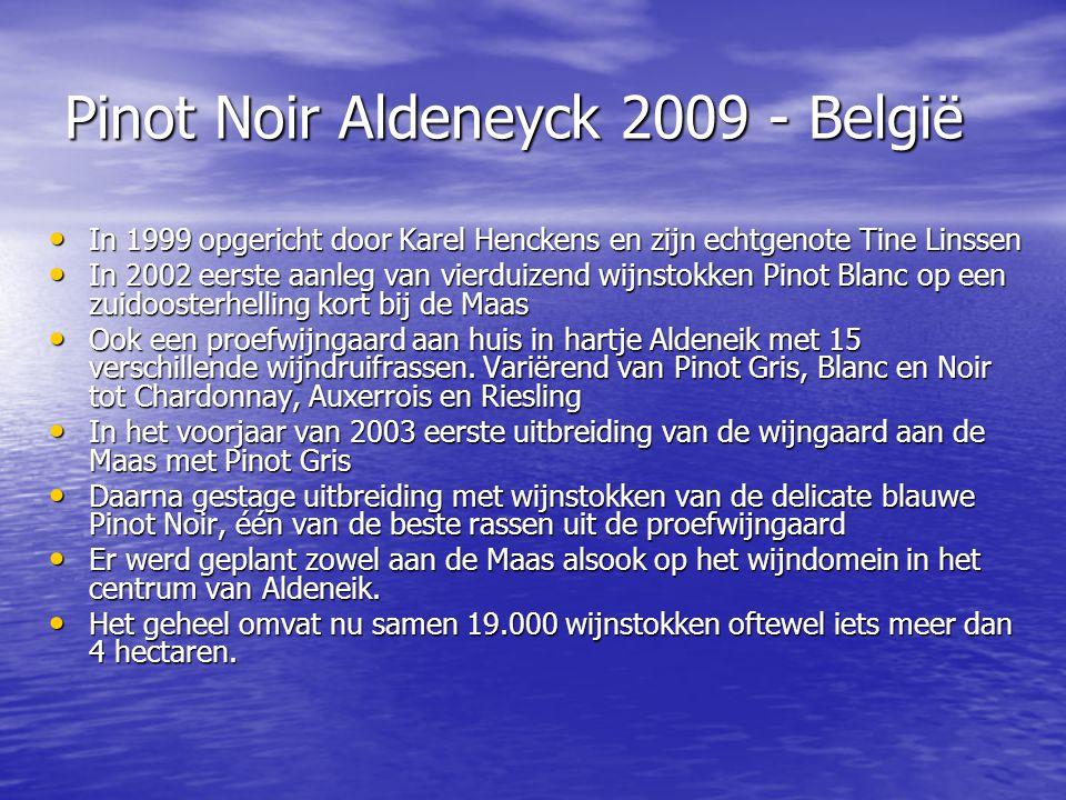 Pinot Noir Aldeneyck 2009 - België
