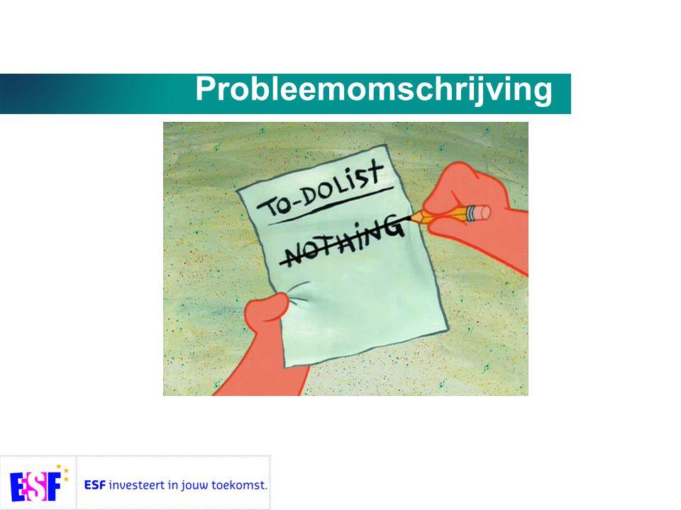 Probleemomschrijving