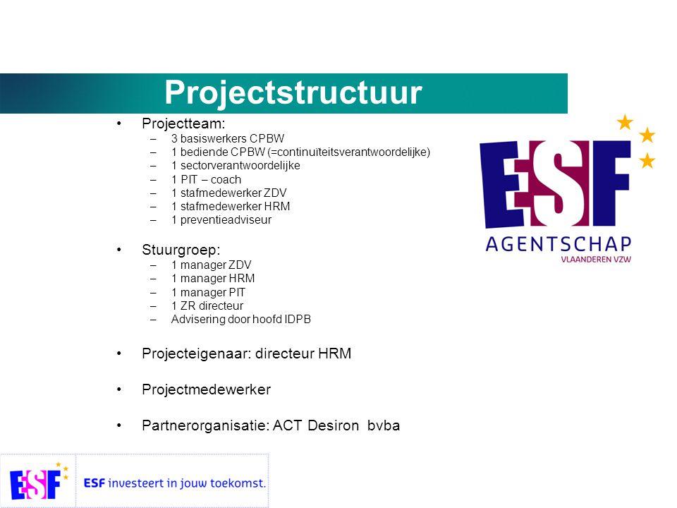 Projectstructuur Projectteam: Stuurgroep: