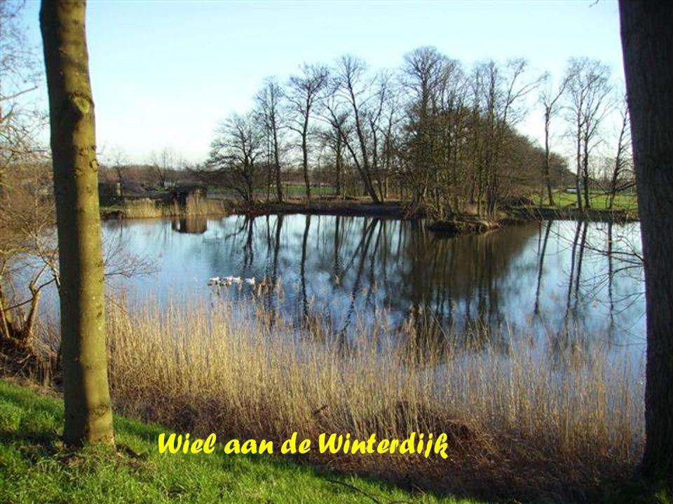 Wiel aan de Winterdijk