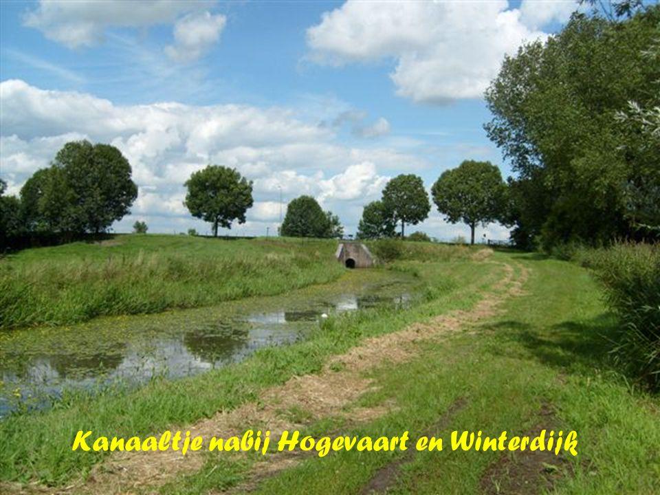 Kanaaltje nabij Hogevaart en Winterdijk