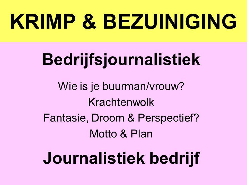 Bedrijfsjournalistiek Journalistiek bedrijf