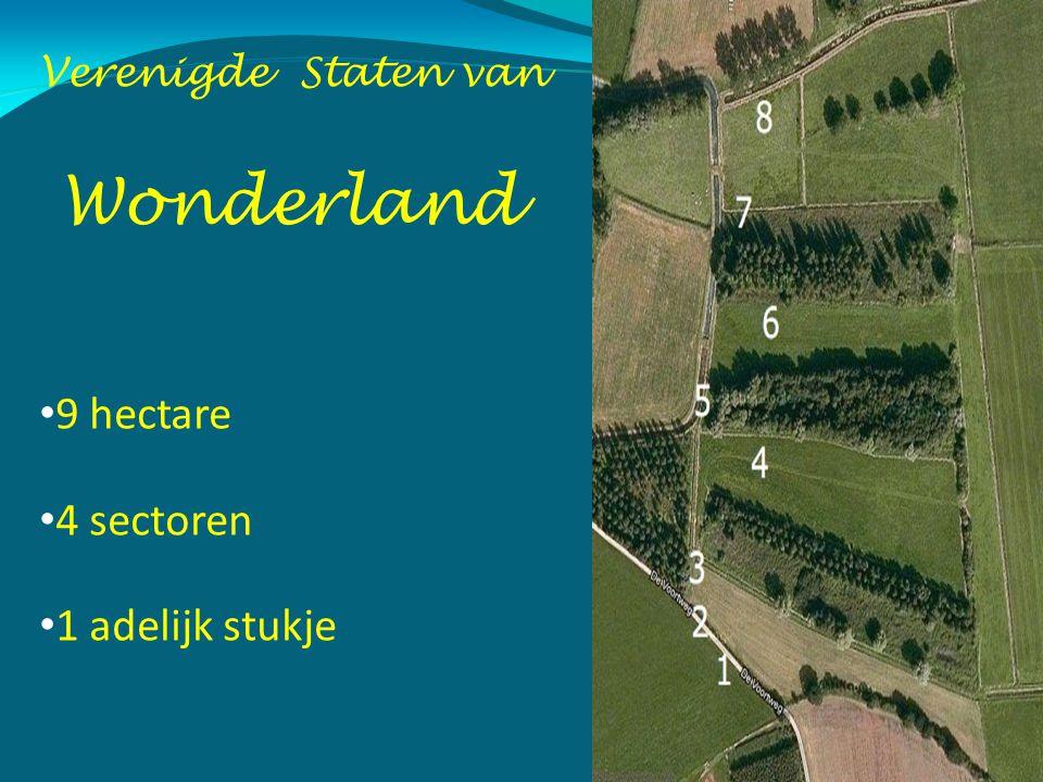 Verenigde Staten van Wonderland 9 hectare 4 sectoren 1 adelijk stukje