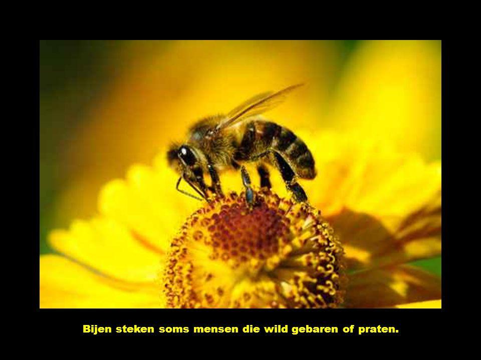 Bijen steken soms mensen die wild gebaren of praten.