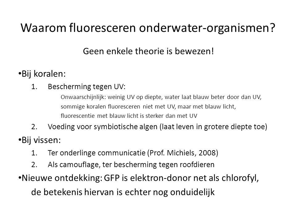 Waarom fluoresceren onderwater-organismen