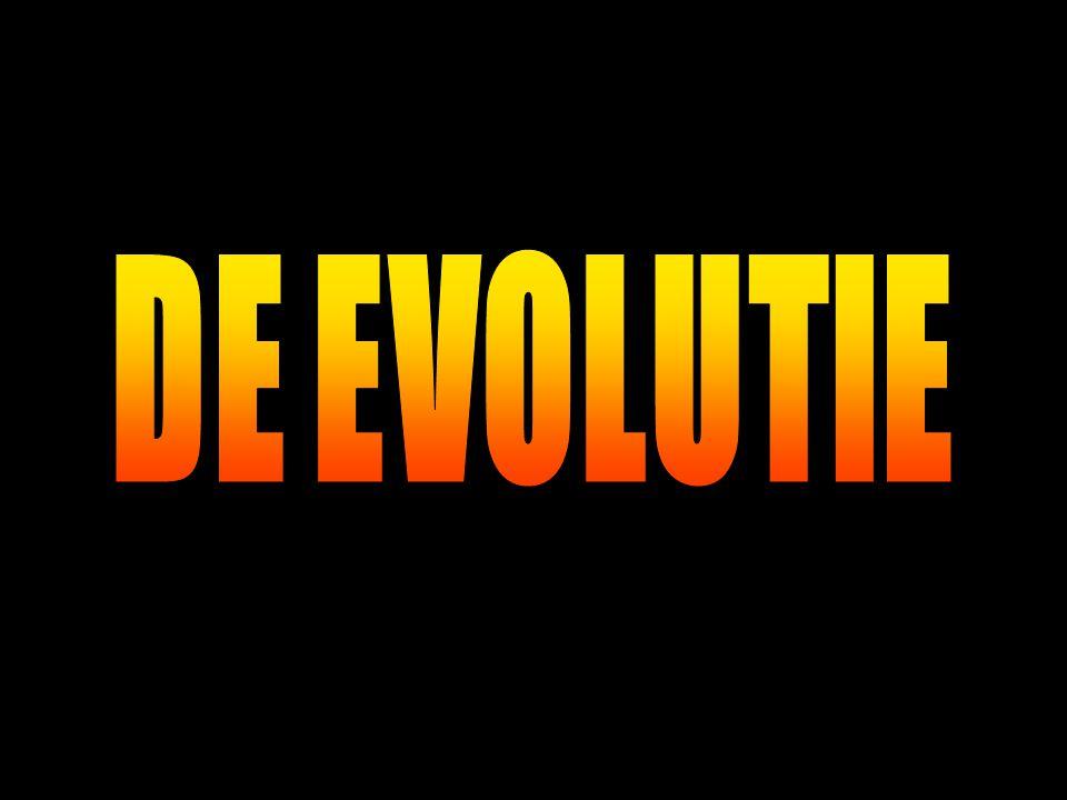 DE EVOLUTIE