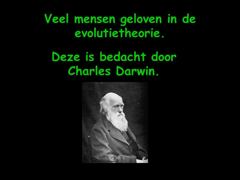 Veel mensen geloven in de evolutietheorie.