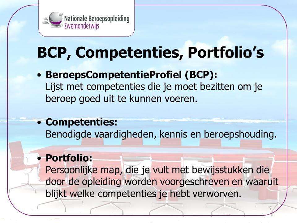 BCP, Competenties, Portfolio's