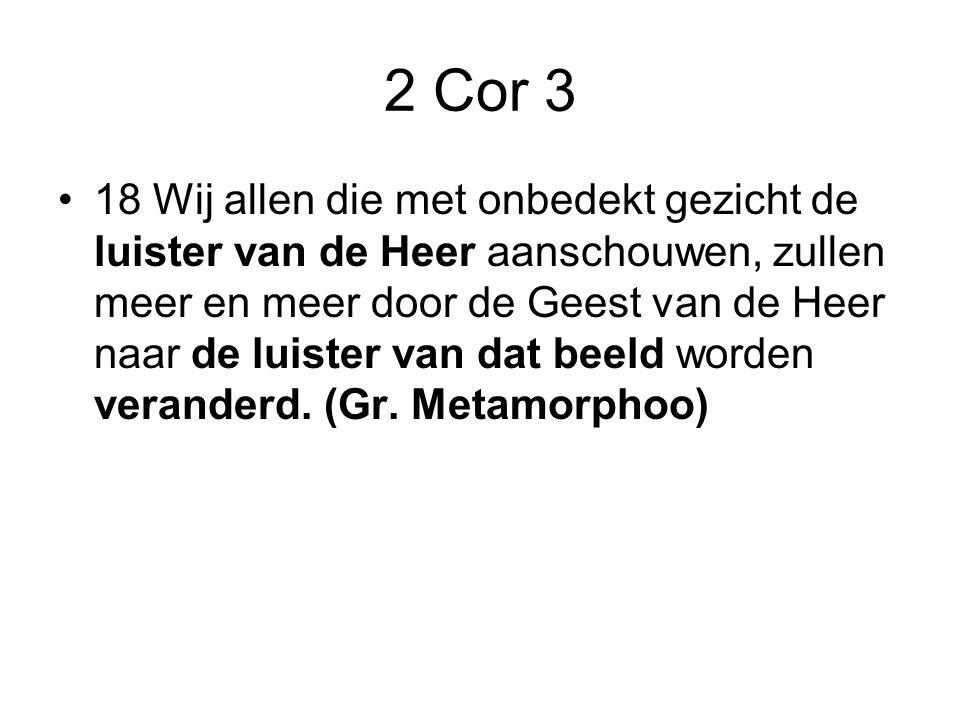 2 Cor 3