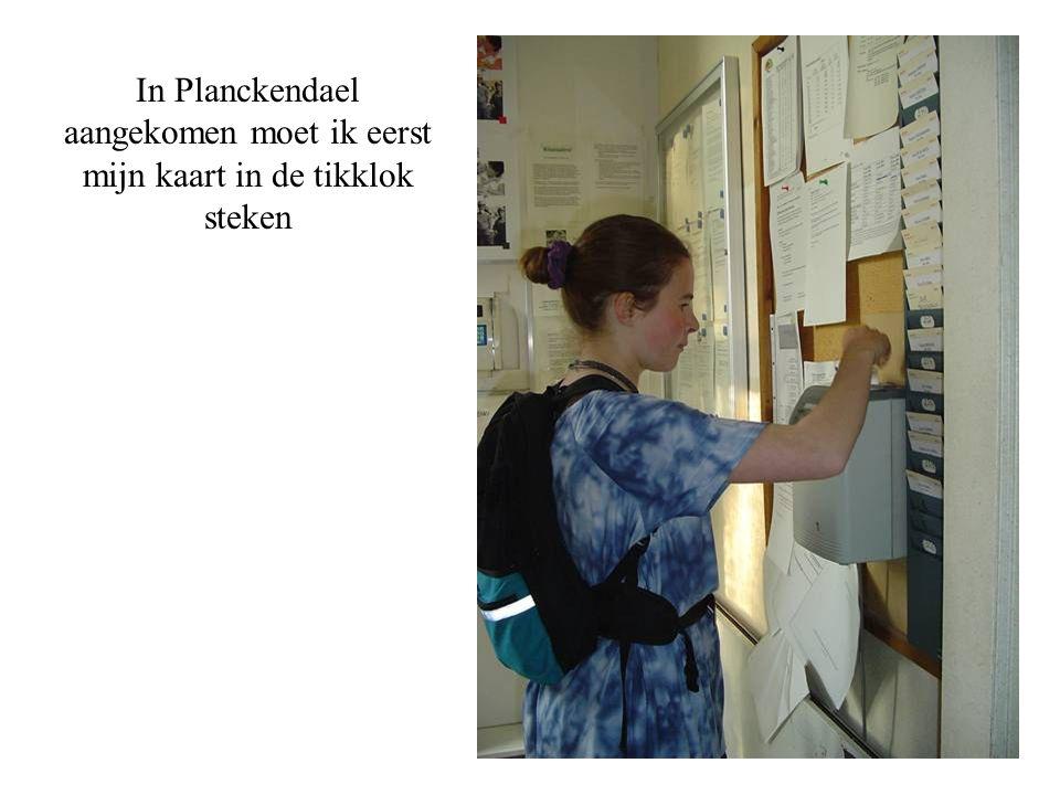 In Planckendael aangekomen moet ik eerst mijn kaart in de tikklok steken