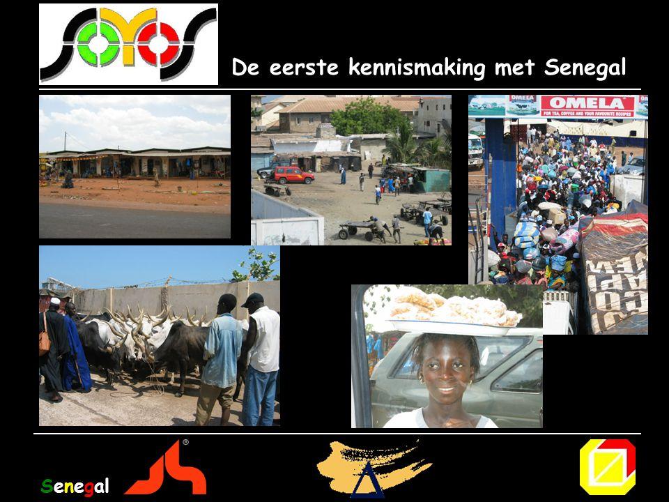 De eerste kennismaking met Senegal