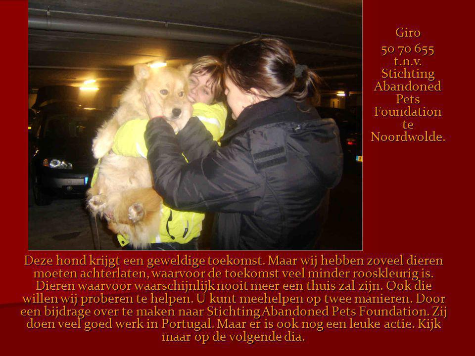 50 70 655 t.n.v. Stichting Abandoned Pets Foundation te Noordwolde.