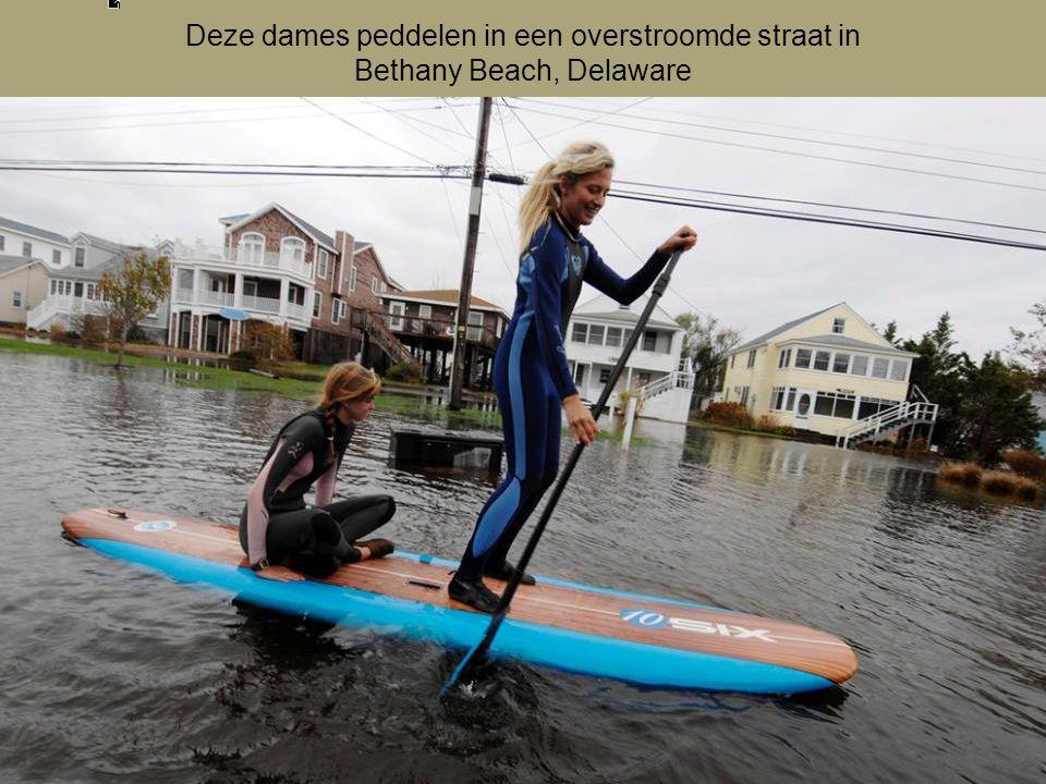 Deze dames peddelen in een overstroomde straat in