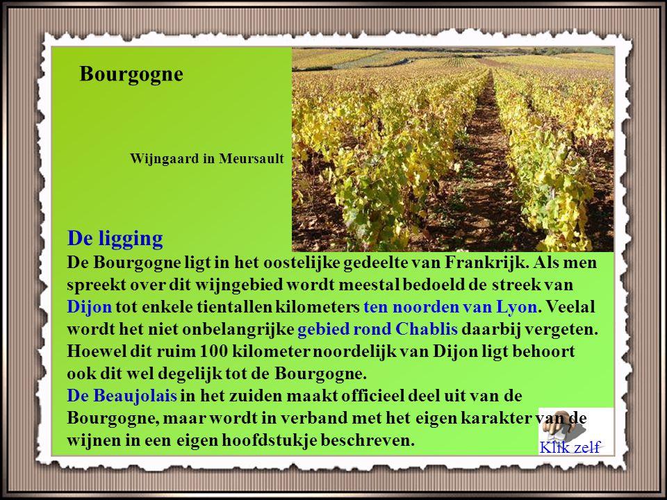Bourgogne Wijngaard in Meursault. De ligging.