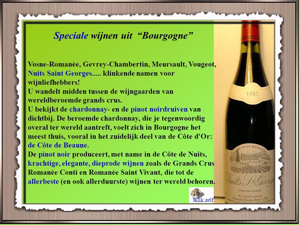 Speciale wijnen uit Bourgogne