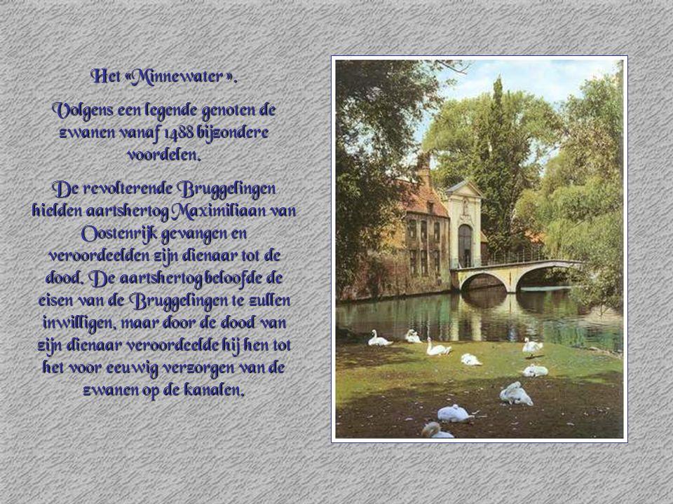 Volgens een legende genoten de zwanen vanaf 1488 bijzondere voordelen.