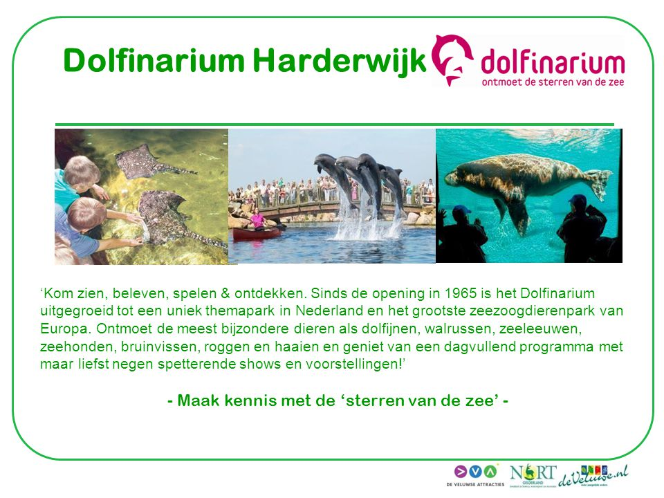 Dolfinarium Harderwijk