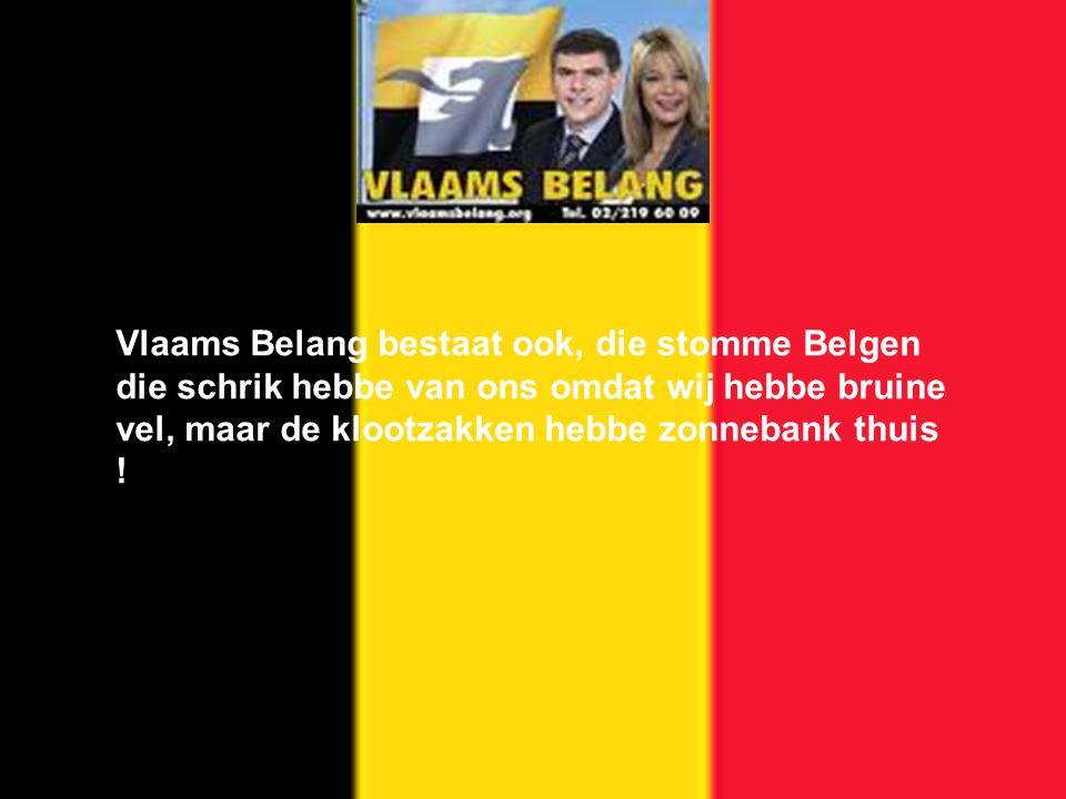 Vlaams Belang bestaat ook, die stomme Belgen die schrik hebbe van ons omdat wij hebbe bruine vel, maar de klootzakken hebbe zonnebank thuis !