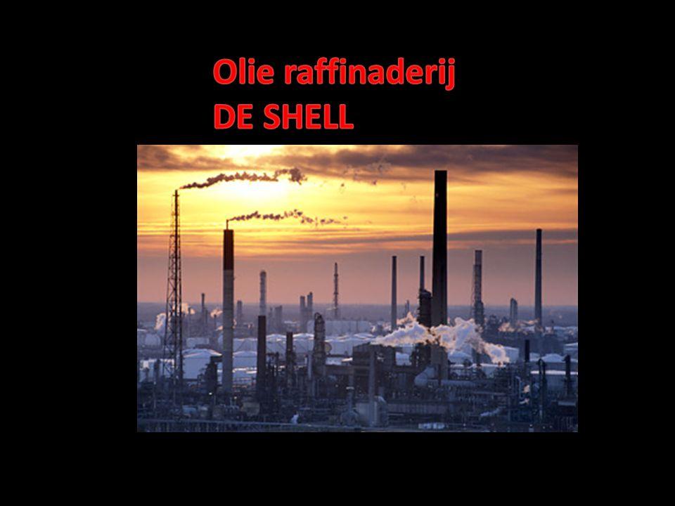 De Shell in Pernis is wereldbekend om zijn eeuwige vlam