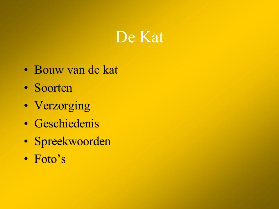 De Kat Bouw van de kat Soorten Verzorging Geschiedenis Spreekwoorden