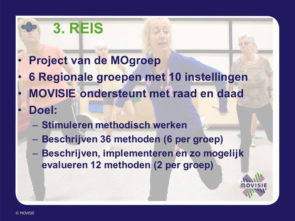 3. REIS Project van de MOgroep 6 Regionale groepen met 10 instellingen