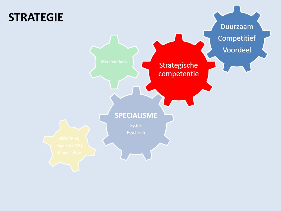 Strategische competentie