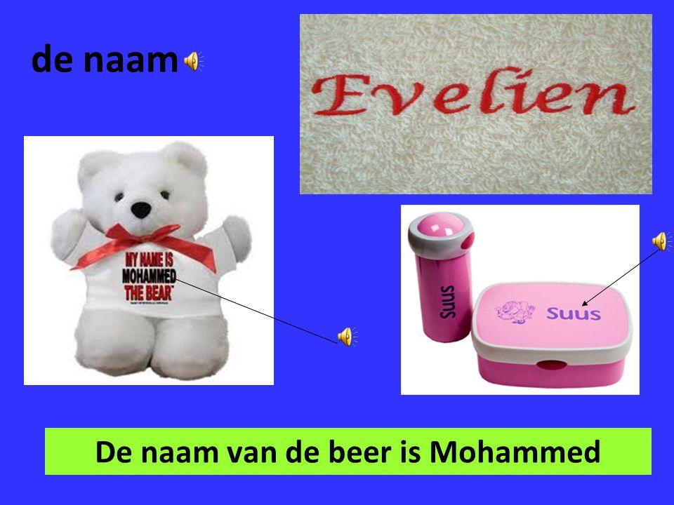 De naam van de beer is Mohammed