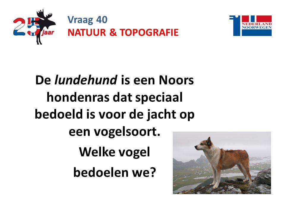Vraag 40 natuur & topografie. De lundehund is een Noors hondenras dat speciaal bedoeld is voor de jacht op een vogelsoort.