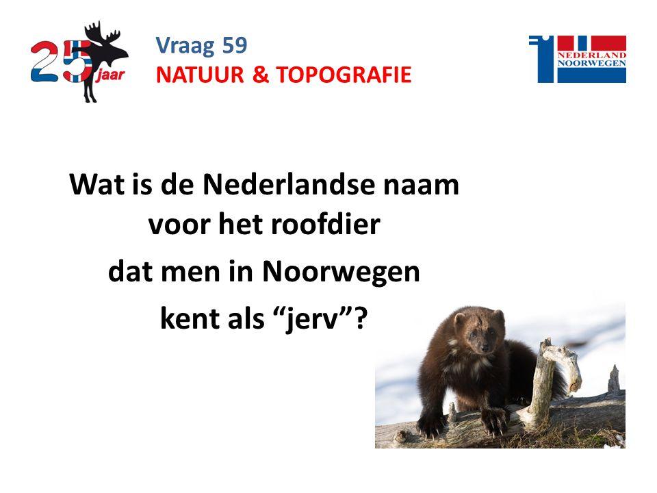 Wat is de Nederlandse naam voor het roofdier