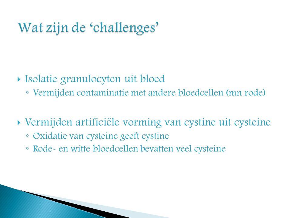 Wat zijn de 'challenges'