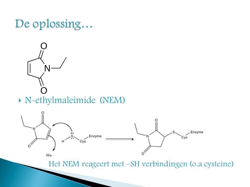De oplossing… N-ethylmaleimide (NEM)