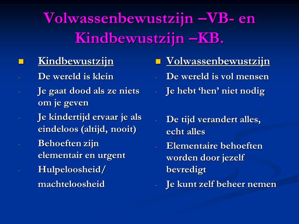 Volwassenbewustzijn –VB- en Kindbewustzijn –KB.