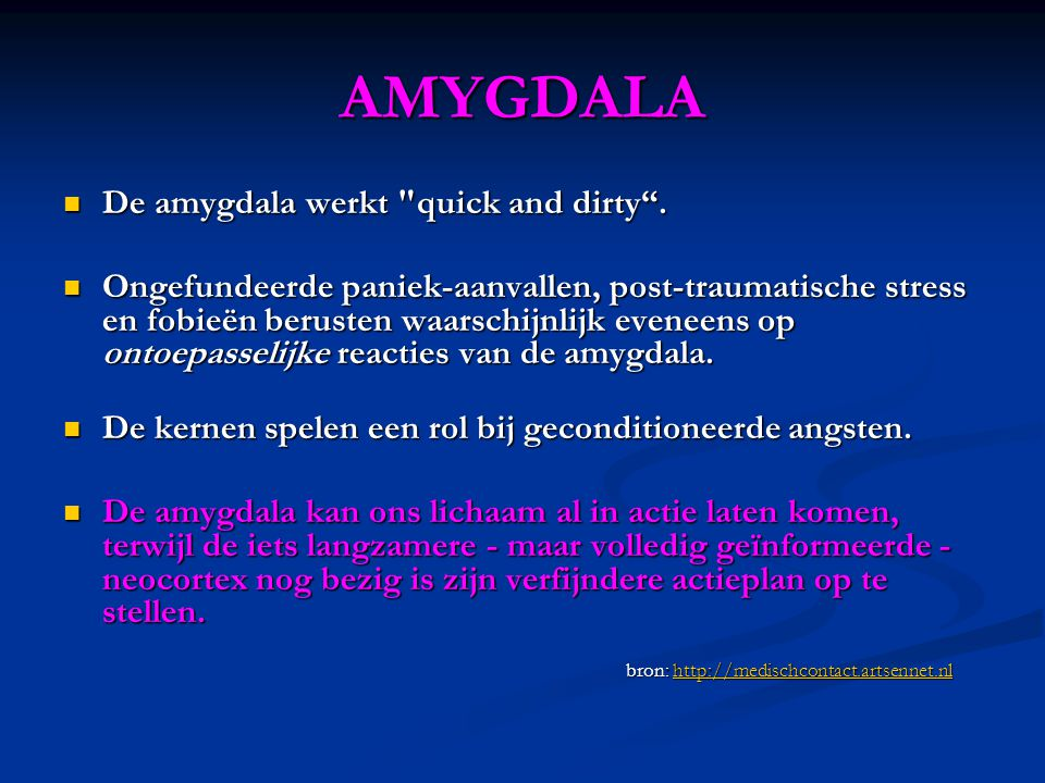 AMYGDALA De amygdala werkt quick and dirty .