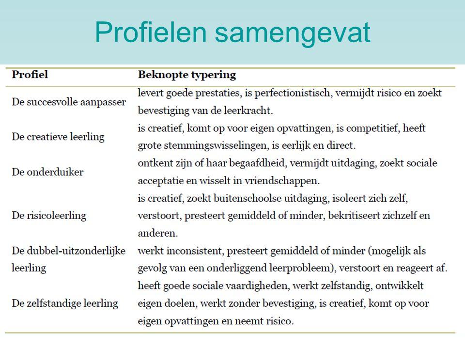 Profielen samengevat Hier zijn de profielen nog eens samengevat in het Nederlands.