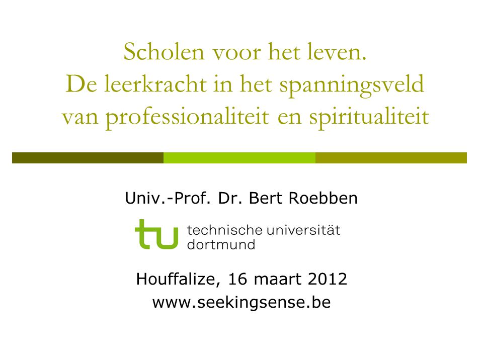 Univ.-Prof. Dr. Bert Roebben