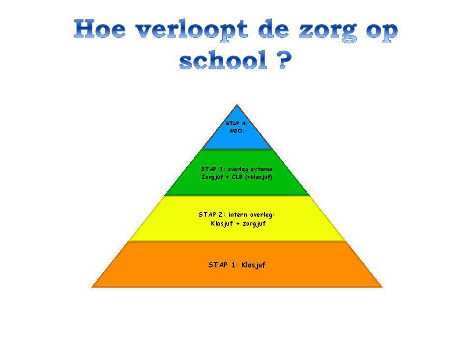 Hoe verloopt de zorg op school