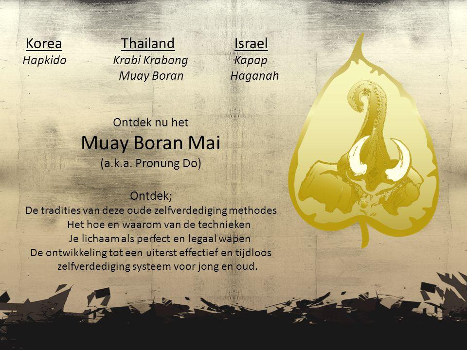 Muay Boran Mai Korea Thailand Israel Hapkido Krabi Krabong Kapap